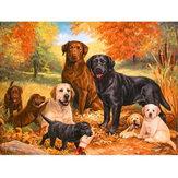 5D diamant schilderijen honden borduurwerk kruissteek foto's kunst Craft Tool Kit Decor