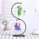 Creativo Supporto per appendere il vaso di terrario di cristallo con vaso di vetro palla Vaso di ferro Stand Holder decorazioni