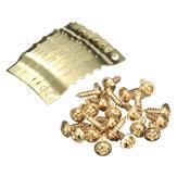 Крючки вешалки золота 10pcs золотые с винтами для фото Paingting