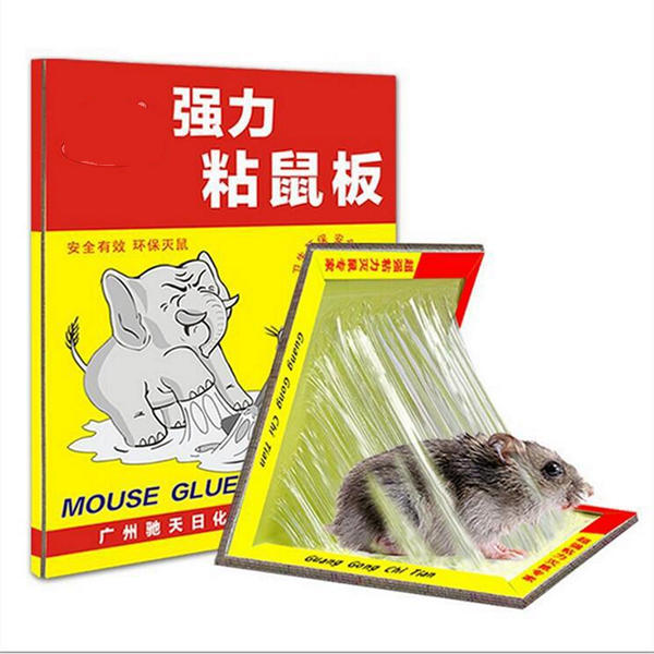 Mouse Glue Traps Sticky Super Board Trap for Rats Rodents Cockroaches Bugs  Ants Spiders Scorpions