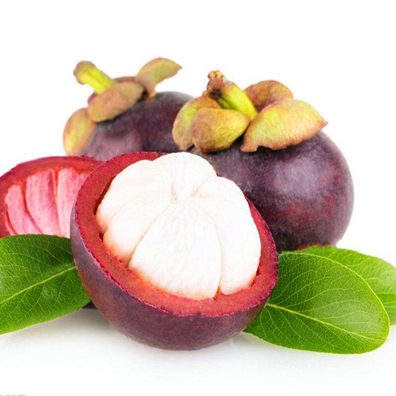 Egrow 50Pcs / Pack Mangosteen Семена Тропический кислый сладкий фрукт Семена Сад Растения Дерево Бонсай фото