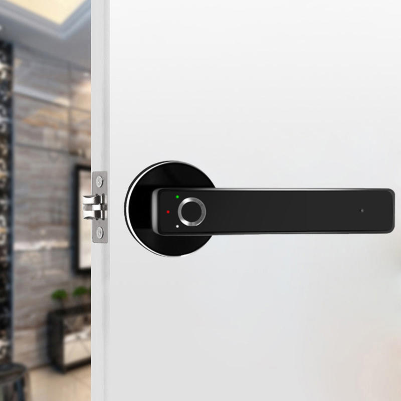 T3 Home In-visible Mute Room Door Lock Smart Fingerprint Lock Wooden Door Bathroom Bedroom Ball Split Lock