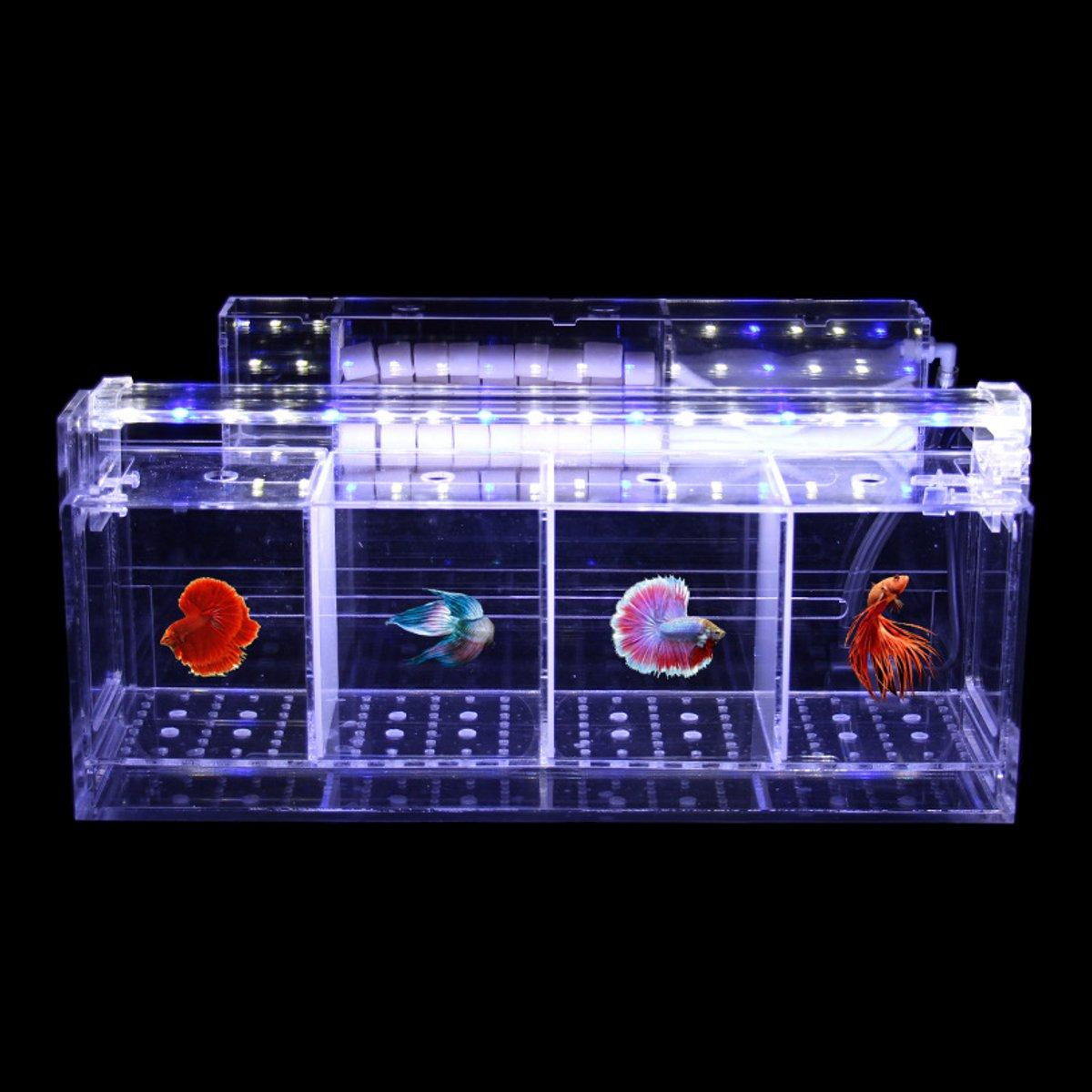 Acrylic Transparent Betta Fish Tank Mini Desktop Aquarium Filter Breeding Box A