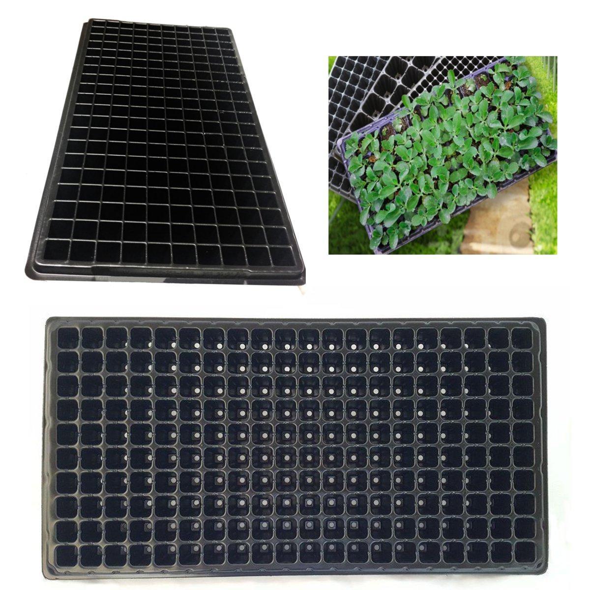 200 Furos Plantio sementes Crescer Caixa Inserir Propagação Berçário Semeadura Inicial