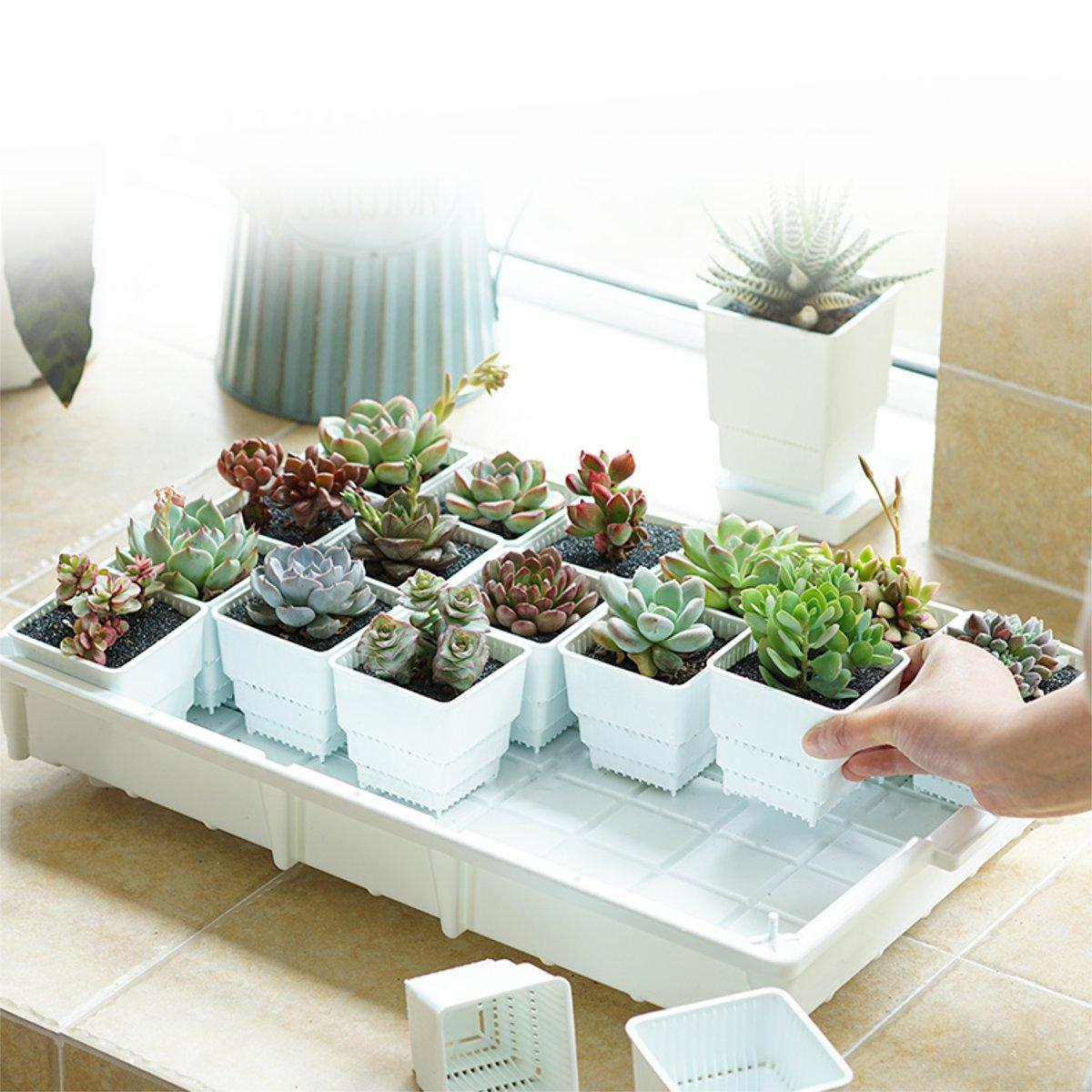 PP Plant Tray Succulents Seedling Drain Balcony Growing Holder Nursery Garden Decorations, Banggood  - buy with discount