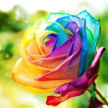 Egrow 200Pcs Rainbow Rose Seeds Rare Colorful Flower Potted Plant Garden Bonsai