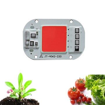LUSTREON AC160-260V 20 W 30 W 50 W Espectro Completo COB LED Crescer Chip Luz para Indoor Planta Flor