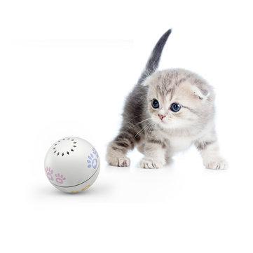 PETONEER PBL010 Smart USB Charging Electric Cat Companion Ball Cat Toy
